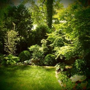 Green with Garden Envy