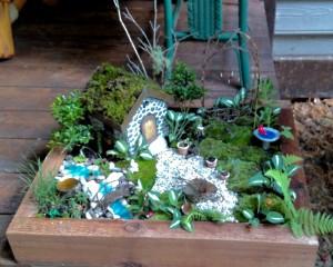 The World in Miniature ! Workshops in Miniature Gardening