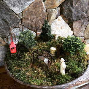 Zen and Magic with Miniature Gardens